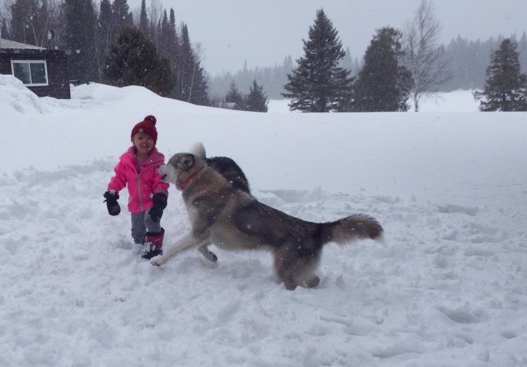 Teddi & Charlie in snow storm